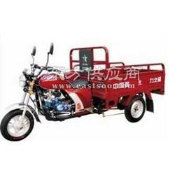 力之星LZX110ZH小太子II代三轮摩托车三轮车图片