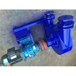 新疆32RGB-1-6阳极泥输送泵、稀有金属液输送泵图片