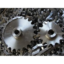 不锈钢链轮厂,日照不锈钢链轮,天惠网带图片