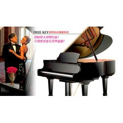 学钢琴买钢琴找雅迪,广州雅迪科技(在线咨询),宣城市学钢琴图片