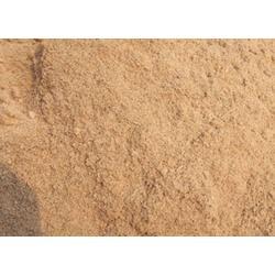优质木材锯末-贝特国际锯末供应-锯末图片