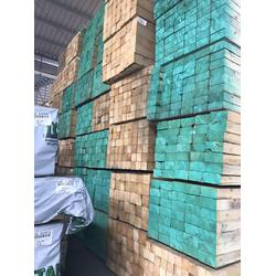 火炬松-贝特国际进口板材产地-火炬松的产地图片