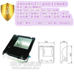 250W220V金卤灯防水投光灯图片