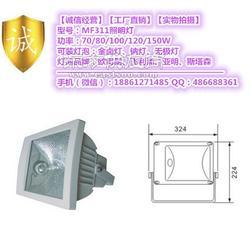 150W高压钠灯泛光灯灯具图片