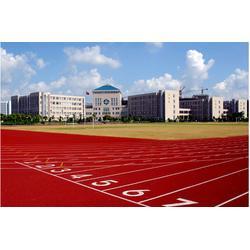 塑胶跑道施工-内蒙塑胶跑道-众鼎体育设施(查看)图片