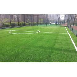 人造草坪足球场地厂|天津人造草坪足球场地| 众鼎体育设施安装价格
