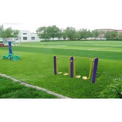 人造草坪足球场、天津人造草坪、 天津市众鼎体育设施(查看)图片