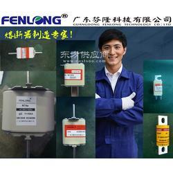 FENLONG芬隆RS72A熔断器订做图片