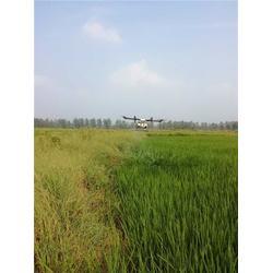 四川农业服务商家,百力士农业,农业服务图片