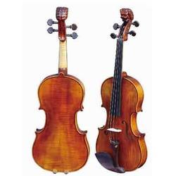 红桥六区弦乐器-悠乐美乐器-代理弦乐器图片