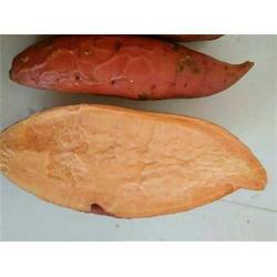 禾田薯业 烟薯25口感-烟薯25图片
