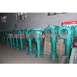 专业液下渣浆泵|广西渣浆泵|济南鑫达泵业有限公司(查看)图片