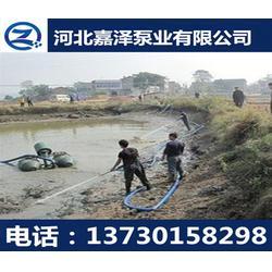 嘉泽泥砂泵,贺州80NSL50-20J液下泥砂泵图片