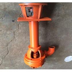 重庆NSL浮筒清淤泵定制-嘉泽水泵厂图片