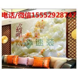 黑龙江大兴安岭3D背景墙加盟品牌速装首选图片