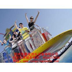 20人冲浪滑板童星游乐厂家直销景区游乐设备报价图片