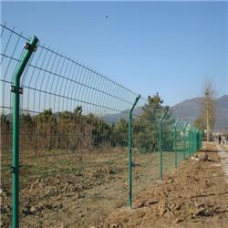 蚌埠双边丝护栏网,安平贺友护栏网,绿色双边丝护栏网图片