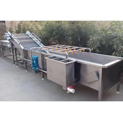 香菇清洗机的生产厂家|梅州香菇清洗机|森岳机械(查看)图片