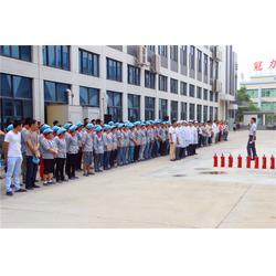 中国生产扭扭车电池的企业|久森新能源(在线咨询)|扭扭车电池图片