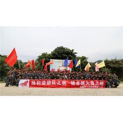 东莞市久森新能源 平衡车电池公司-平衡车电池图片