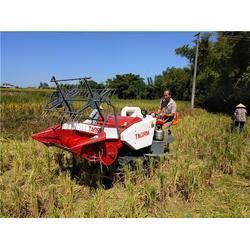 水稻收割机视频-中热农业机械-水稻收割机图片