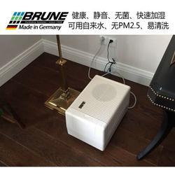 乐器室加湿器进口|乐器室加湿器|BRUNE图片