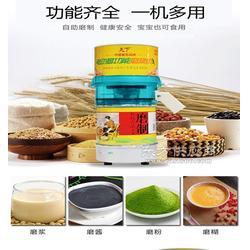 天下HC-100豆浆机专业厂家生产 品质保证图片