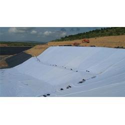 排水网-宏祥股份-复合排水网图片
