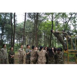 军事户外拓展、渝伦企业团队拓展(在线咨询)、户外拓展图片