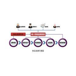 怎样通过网络追溯产品、仙视泓康(在线咨询)、追溯图片