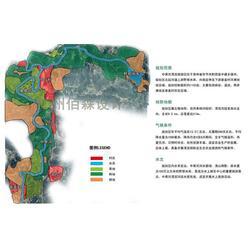 漂流设计、佰森园林、广东漂流设计公司图片
