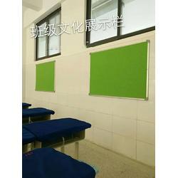 軟木黑板報價-【科普教育】-河南軟木黑板圖片