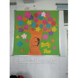 软木黑板定制 上街软木黑板 【科普教育】