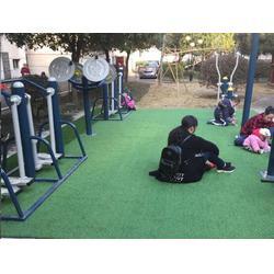新化县健身器材、学校体育健身器材、奥拓体育器材(优质商家)图片