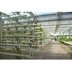 合肥大棚、大棚多少钱、合肥建野温室工程(多图)图片