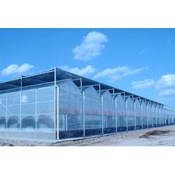 合肥建野、合肥玻璃温室大棚、玻璃温室大棚报价图片