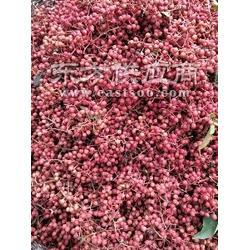 大红袍花椒商图片