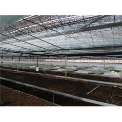 钢架大棚配件-昆明钢架大棚-科创温室大棚(查看)图片
