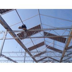 大棚建设、科创温室大棚(在线咨询)、宜良大棚图片