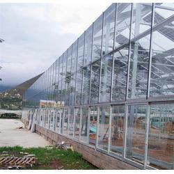 温室大棚建设-晋宁温室大棚-科创温室大棚图片
