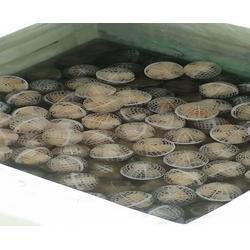 一体化医疗污水处理设备、安徽天铸、安徽污水处理设备图片