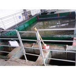 厦门有机废气整顿,有机废气,厦门国净环保公司图片