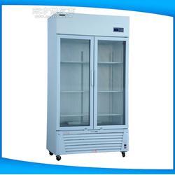 智能芯片恒温恒湿储存箱 CAHWS-500L恒温恒湿储存箱图片