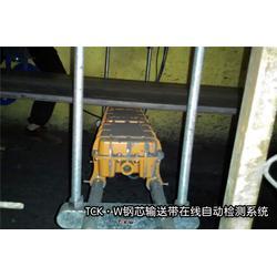 港口钢丝绳检测仪厂家,港口钢丝绳检测仪,威尔若普图片