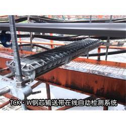 上海钢芯输送带检测厂家-【威尔若普】-上海钢芯输送带检测图片