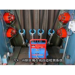 (威尔若普) 许昌钢丝绳检测仪-钢丝绳检测仪图片