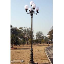 led庭院灯,庭院灯,济南鲁星灯饰(查看)图片
