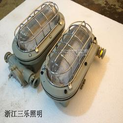 DGC18/127L矿用18W支架灯图片