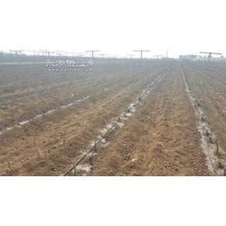 抗酸堿性的滴灌管材廠家果樹滴灌管材圖片