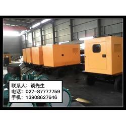 国产发电机维修-华丰源(在线咨询)江汉区国产发电机图片